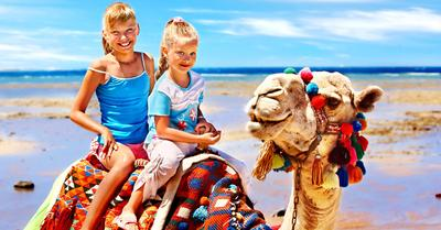 Red sea holidays family deals