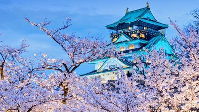 Wendy Wu - Free upgrades on japan tours