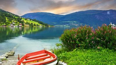 bogo summer 2021 cruises - newmarket holidays