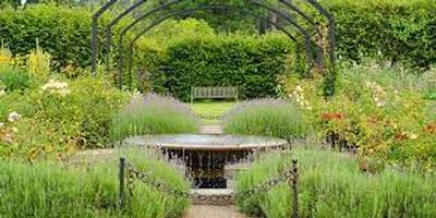 RHS garden wisley - great little breaks
