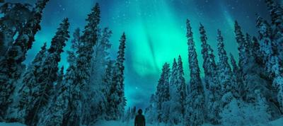 northern lights tours from transun