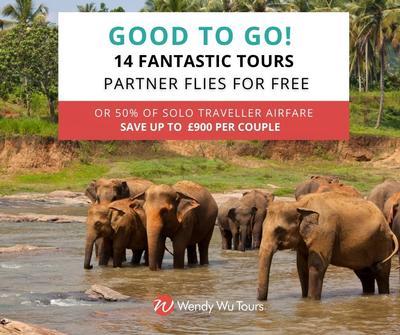 partner flies free - wendy wu tours